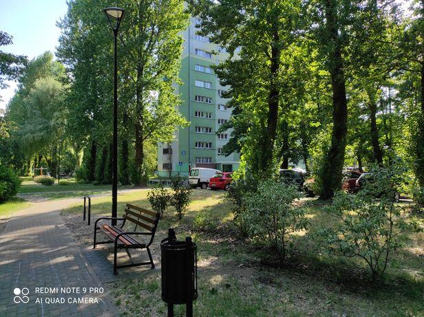 Sprzedam mieszkanie w bardzo urokliwym miejscu w Łodzi na Teofilowie