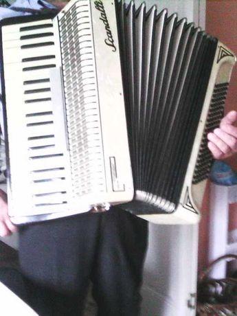 Włoski akordeon skandali