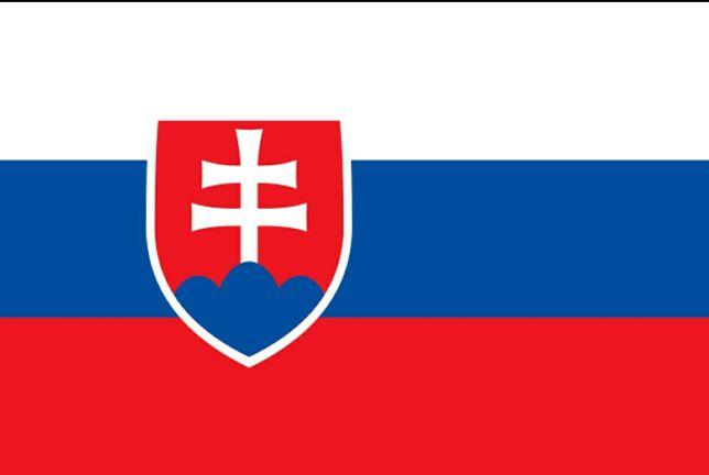 Переклади словацької  мови