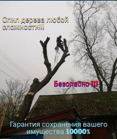 Спил та обрізка аварійних дерев / Удаление деревьев любой сложности!