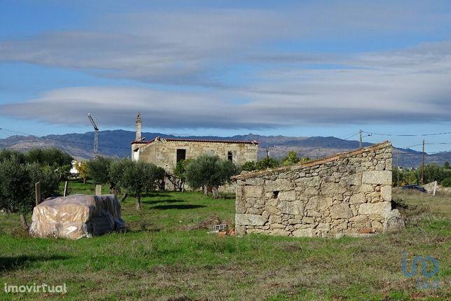 Terreno - 24000 m²