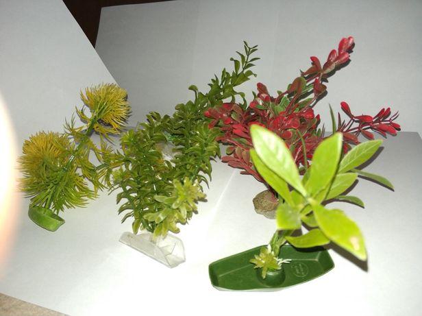Zestaw roślin akwariowych (sztuczne - ładne)