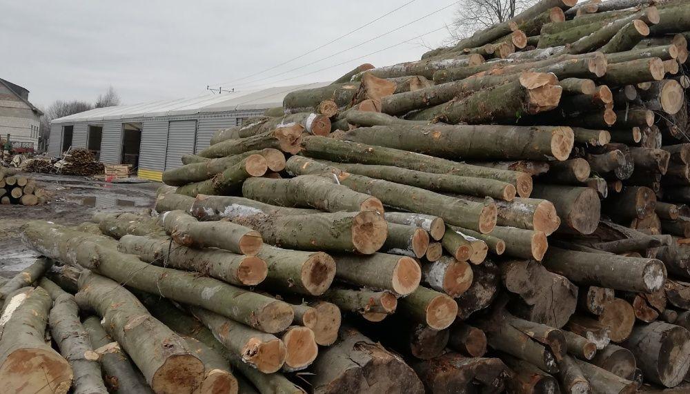 Drewno opałowe - METRY, BUK S2A, bukowe, wałki, 20 lub 40 mp Tomaszów Lubelski - image 1