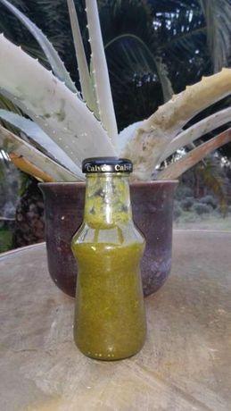 Aloe Vera - Babosa - Suco de fruta 100% sem aditivos e folhas, plantas