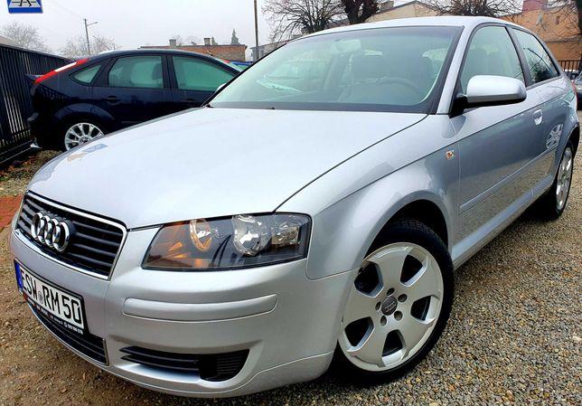 Audi_A3_8p_1.6mpi_Alu17_Parktronic_Grzane_Fotele_170tyś/km__Opłacona__