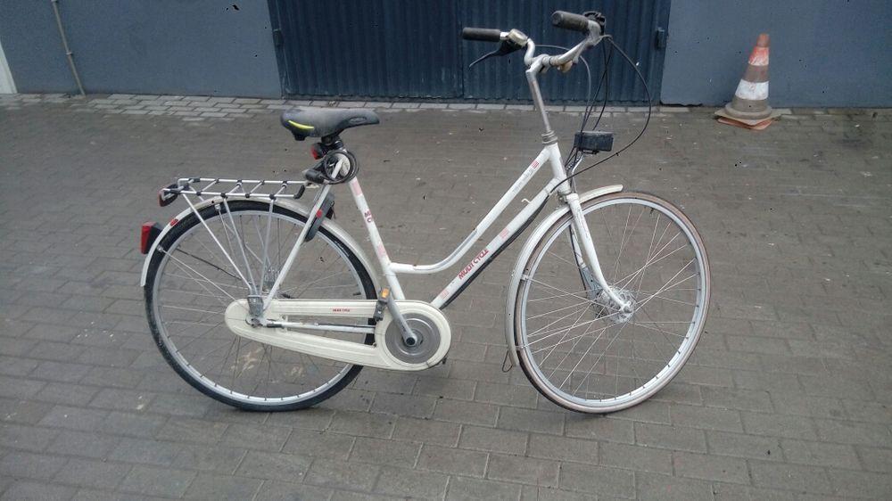 Rower multicycle Piasek - image 1