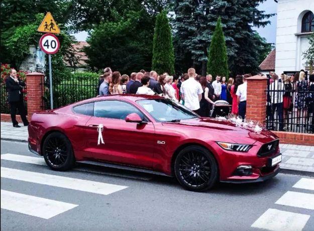 Rubinowy Ford Mustang do ślubu. Wynajem samochodu na wesele, na ślub