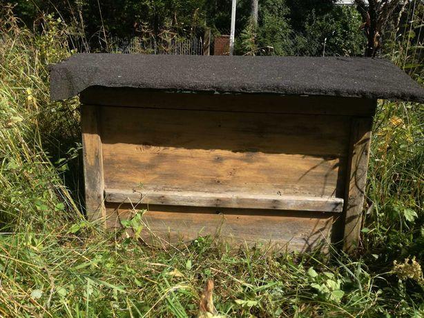 Ul pszczeli stary