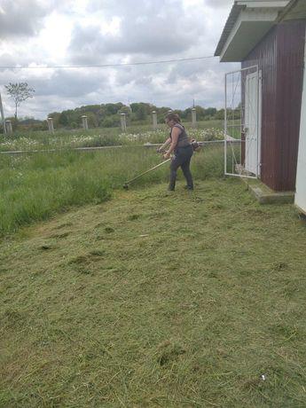 Покос травы тагазон и уборка