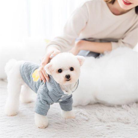bluza zimowa dla pieska
