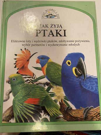 """""""Jak żyją ptaki"""""""