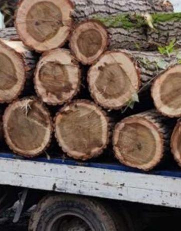 Продаём дрова твёрдые породы дуб, акация и граб