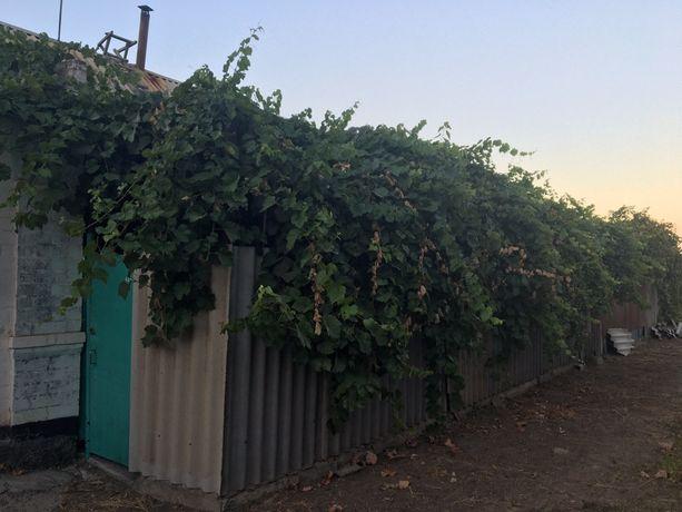 Пол дома по улице Песчанской
