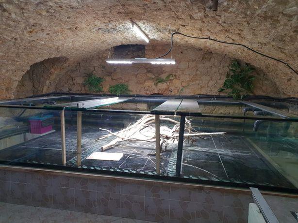 Akwarium na wymiar 120x40x50 optiwhite PRODUCENT
