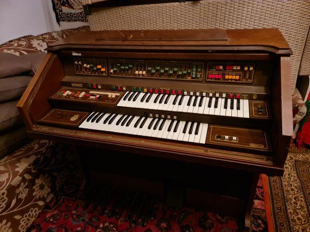 Organy Solina F225