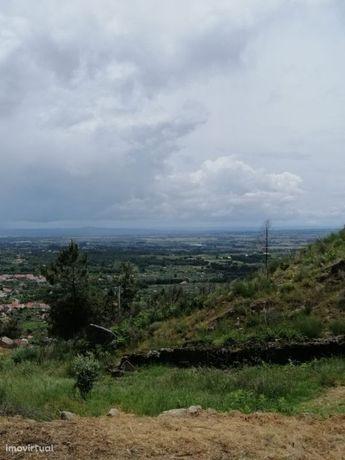 Terreno  Venda em São Vicente da Beira,Castelo Branco