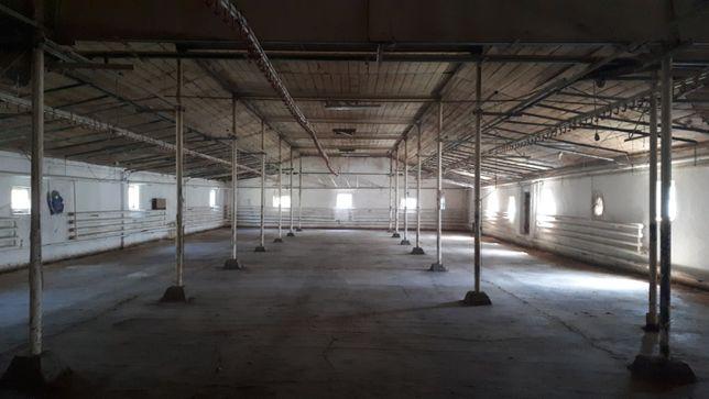Miejsce z zabudowaniami gospodarczymi na wynajem (6000 m²)
