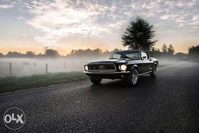 Mustang auto / Samochód do ślubu zabytek