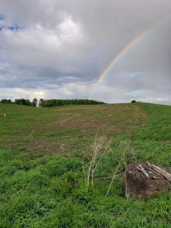Działka rolna Gady 32 ary (160x20).