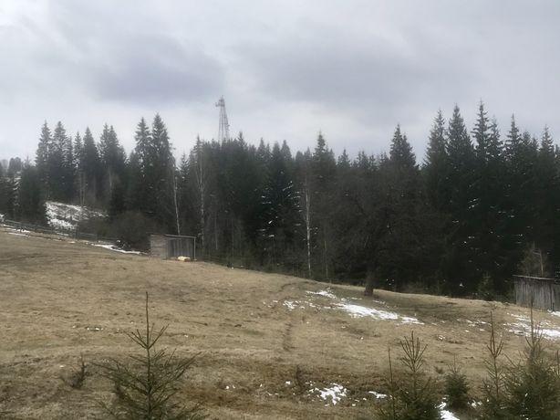 Земельна ділянка в с. Яблуниця