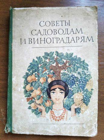 Большая старая книга о виноградарстве Советы садоводам и виноградарям