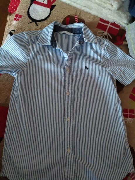 Sprzedam Koszulę h&m128