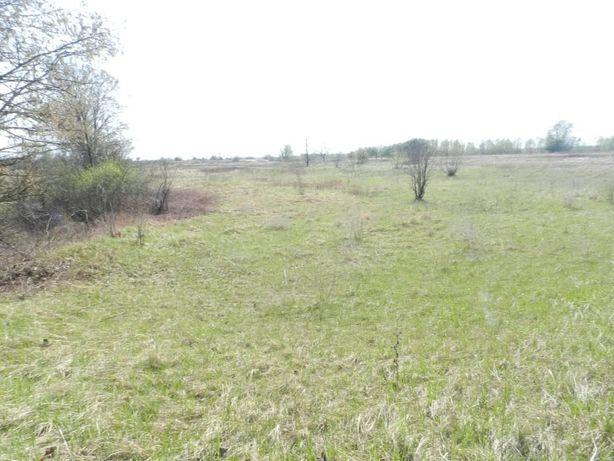земельный участок с.Неданчичи на берегу Днепра
