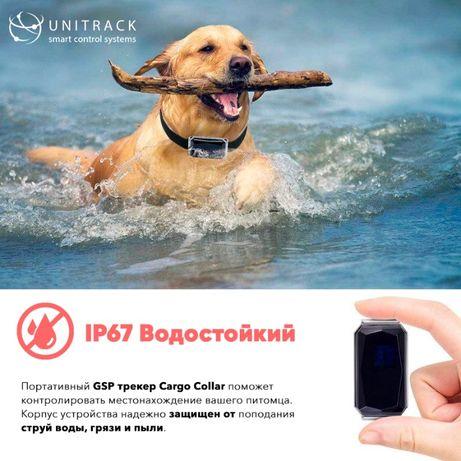 GPS трекер ошейник, влагостойкий для животных собак и кошек