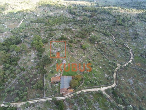 Quinta Agrícola, situada na Serra de Santo António - Alca...