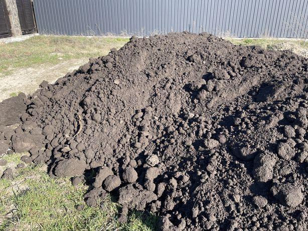 Чернозем (грунт растительный)