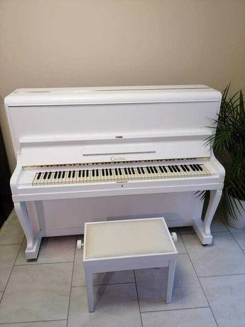 Sprzedam pianino CALISIA M36