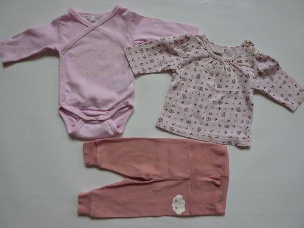 Body, bluzeczka , spodenki r. 56