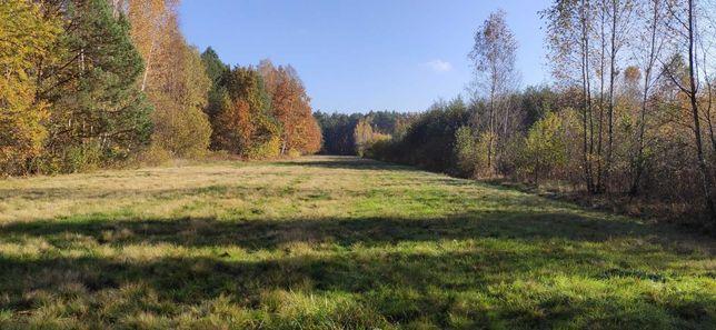 62 ary. Działka rolna/rekreacyjna. Id: 180601_2.0004.2758