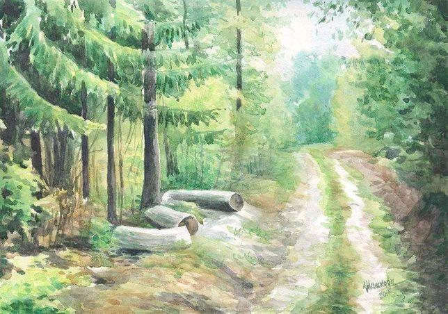 Картина Акварель - Дорога на лесной просеке - художник Оксана Шашкова