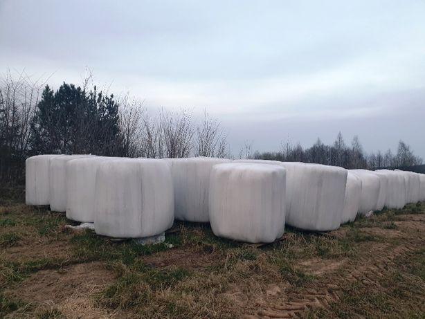 Sianokiszonka -trawy siane z koniczyną 2020