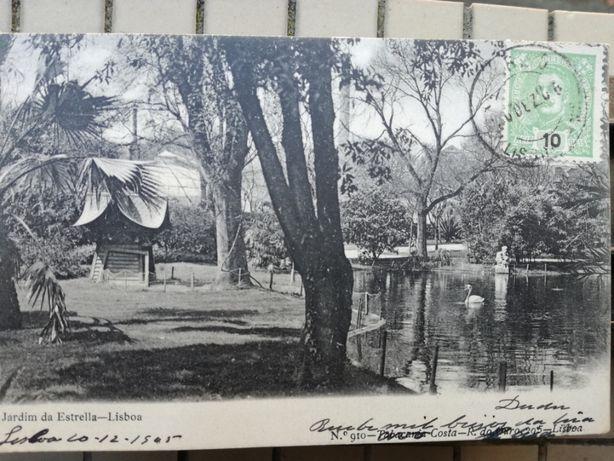 Postal 1905 Jardim de Estrela Lisboa