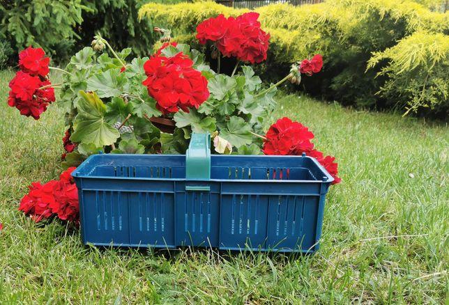 Nowe Łubianki Plastikowe, Kobiałki na, truskawki, maliny i inne owoce