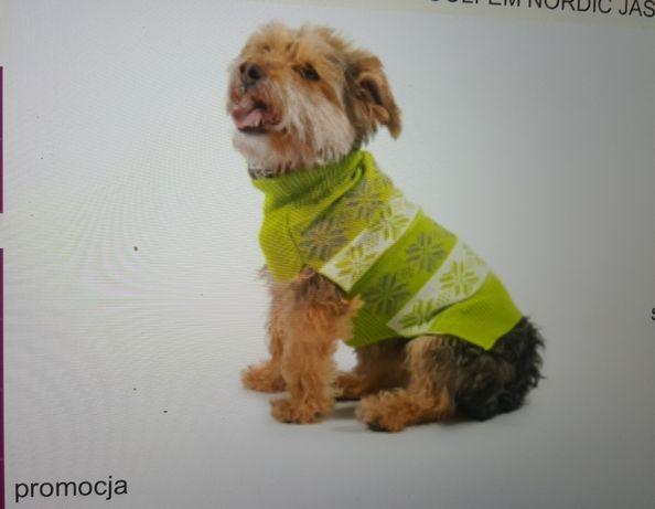 Zielony sweter dla psa Nordic