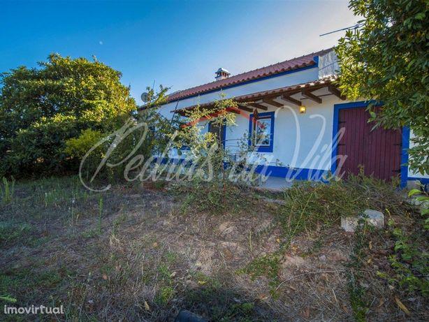 Fantástico Monte Alentejano com 2 casas em bom estado e 1...