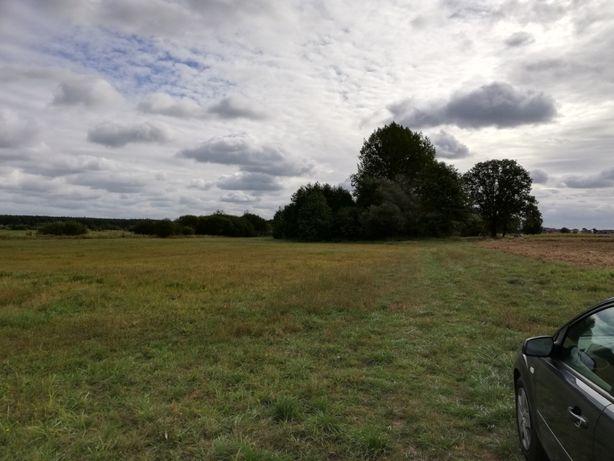 Działka ,łąka ,ziemia rolna 1,9942 ha