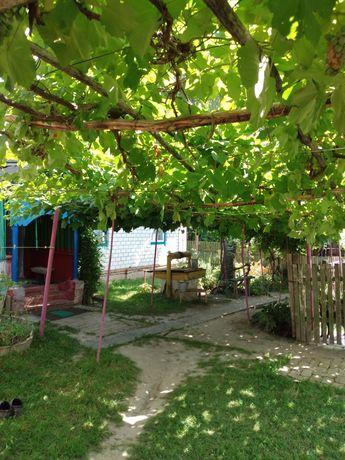 Дом дача в селе Стольное