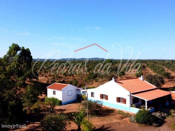 Quinta de 3,8ha + Moradia T2 equipada - Bicos - Odemira