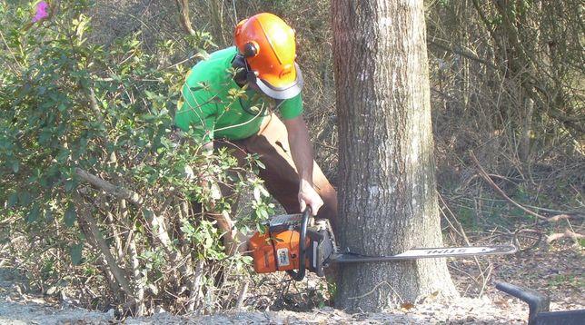 Спил деревьев, покос травы, уборка. Земляные работы.