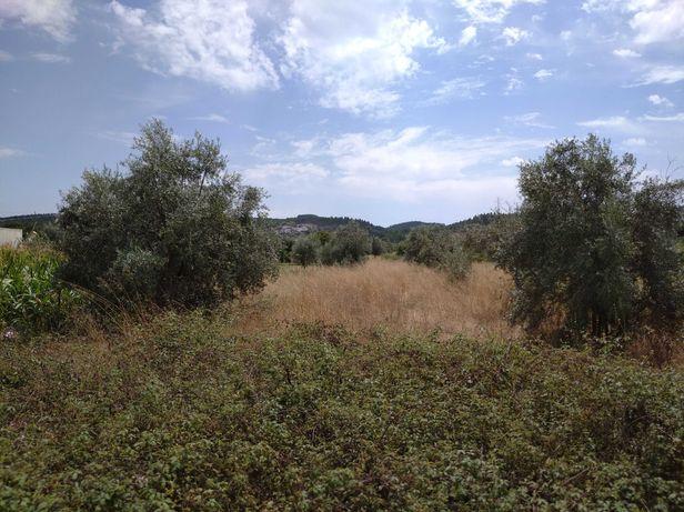 Terreno em Alvega