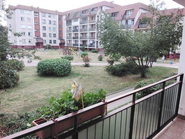 Mieszkanie do wynajecia  Augustow CENTRUM!(niski czynsz)