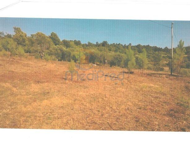 Terreno Rústico com 13200m2 em Covas e V. N. de Oliveirinha
