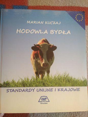 Hodowla bydła. Standardy unijne i krajowe