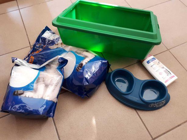 Kuweta + miska + łopatka + żwirek dla kota+ szampon