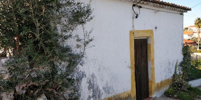 Terreno e Casa em Mouriscas - Abrantes