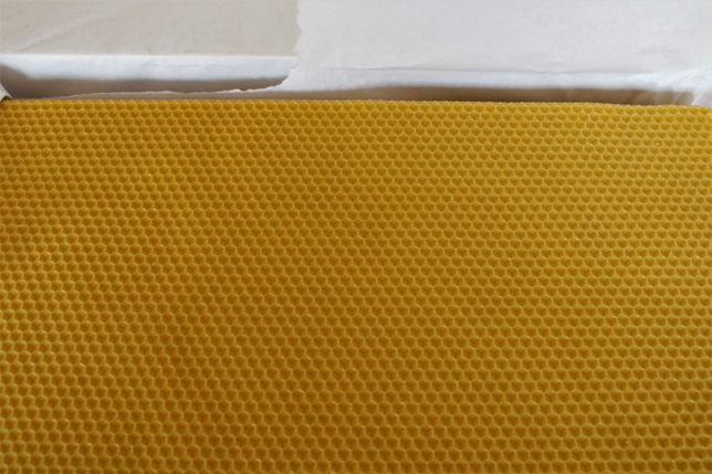 Węza pszczela wielkopolska 5kg